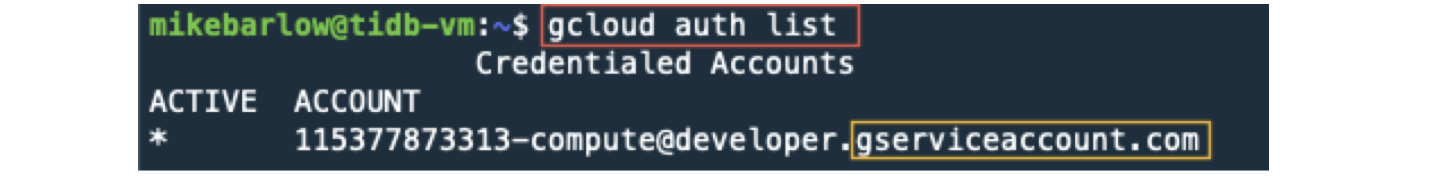 Execute gcloud commands with user account