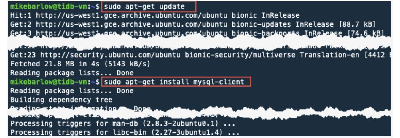 Install a MySQL client using apt-get